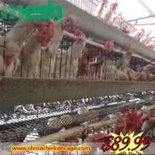 chicken brooder cage for sale
