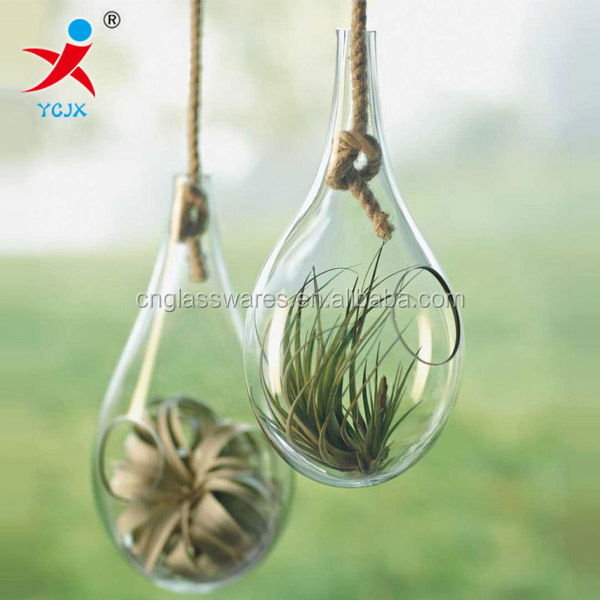 home decoration drop glass air plant terariums with rope / handblown hanging terrariums