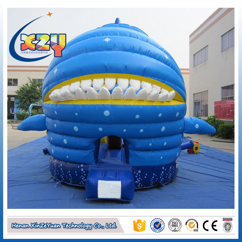 Inflatable water slide/ bouncy castle with slide for kids