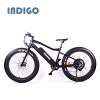 China Supplier Mountain Fat Tire Electric Bike mid motor tyre electric bike/bycicle/ebike