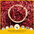 Spices and herbs natural dehydrated red chilli pods