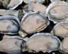 /product-detail/factory-supply-halal-oyster-shell-extract-powder-60496294749.html
