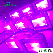 Best selling products 10W 20W 30W 50W 70W 100W 200W 300W 400W 500W red 660nm blue 450nm LED grow flood light