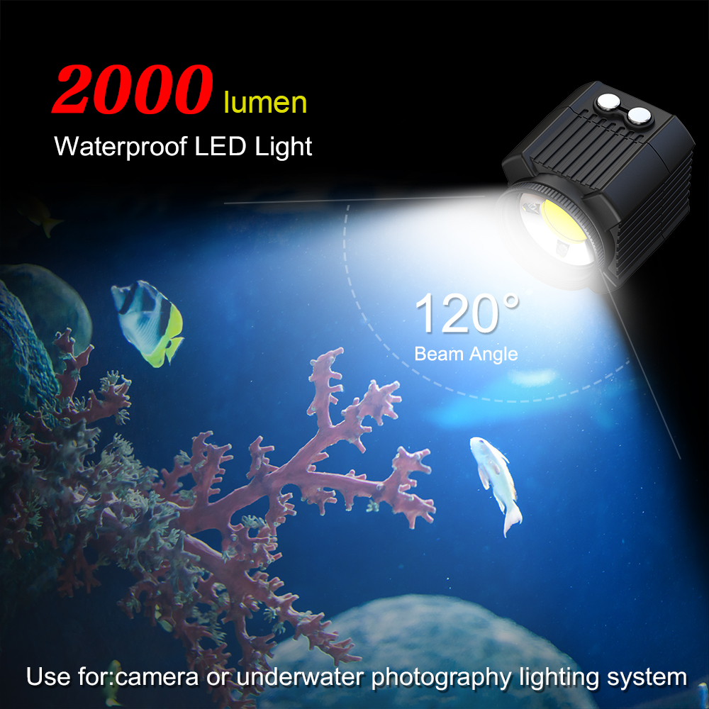 SL-19 diving Flashlight Camera Flash Light Lamp Waterproof Underwater 60m 600-2000LM with SOS light White Red Blue light