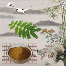 Lanbing supply high quality mimosa pudica extract mimosa powder for sale mimosa extract