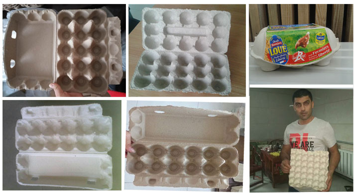 Reciprocating Waste Paper Recycling Small Egg Tray Making Machine