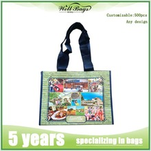 cangnan Apparel Industrial Use and Hand Length Handle Sealing & Handle PP Woven Bags