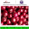 /product-gs/supply-chinese-onion-seeds-price-60334160872.html