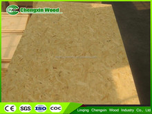 OSB/Shuttering Plywood/Film Faced Plywood sale from chengxin