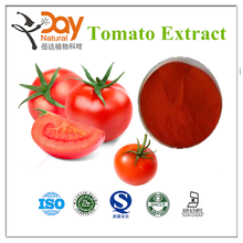 100% Natural Fresh Freeze Dried Tomato Powder with Low Price