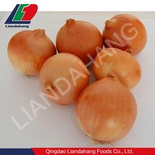 Newest Crop All Kinds of Onions Yellow Onions Wholesale Prices