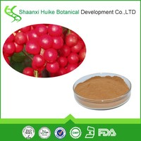 schisandra fruit extract/benefits of schizandra/schizandrae fructus