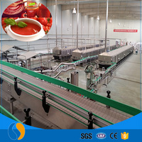 Tomato Processing Plant Production Line Food