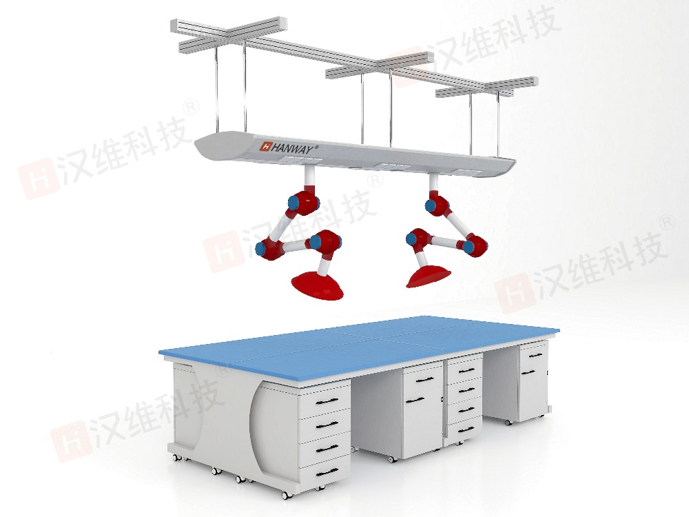 Hanging functional wing lab equipment lab bench