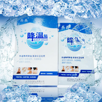 Hot sale Private Label Cooling Pain Relief No Medicinal Ingredients Hydrogel Cooling Gel patch