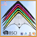 Dual-line Stunt kite, Advertising Stunt kite, Promotional Stunt kite from Kaixuan kite factory