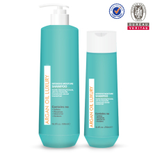salon quality hair products argan oil shampoo and conditioner