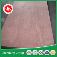 low price commercial plywood made in china