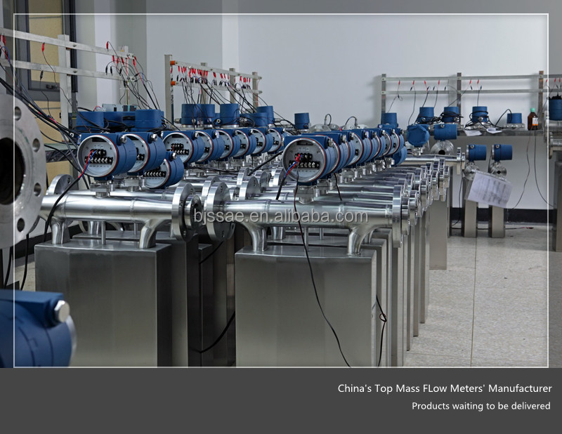China's Top Coriolis Flow Meter Manufacturer