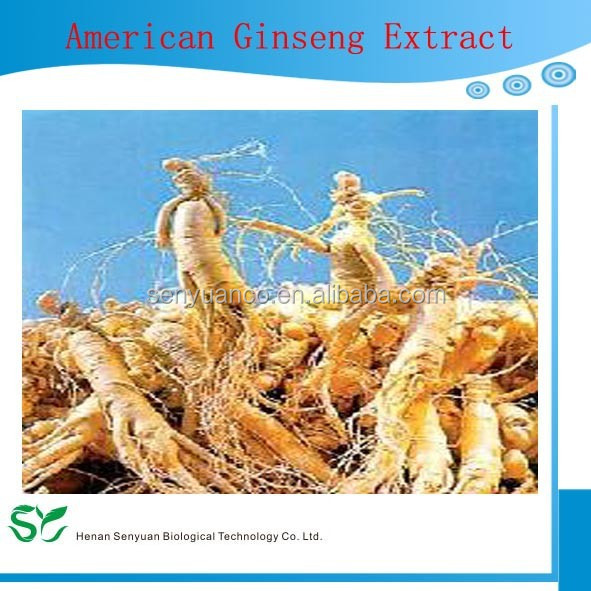 American Ginseng Extract(10%-80% American Ginseng Saponins by UV)