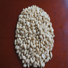 50/60 blanched peanut kernel/Wholesale of various sizes of peanuts