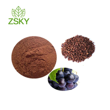 Hot Sale Water Soluble Grape Seed Extract Powder (high orac value) 95% OPC