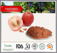 High purity 95% GPC Grape seed extract capsule , Water soluble Grape seed extract in bulk