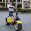 Dogebos 2 wheel city off road fat tyre electric scooter 1500w citycoco scooter