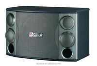 Professional karaoke sound box 12 inch Woofer KTV speaker DL-1000