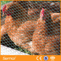 Lowest Price Galvanized Chicken coop Wire Mesh