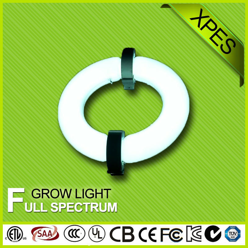 technical innovation full spectrum lamp replace led cob grow light