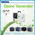 CE 3g 5g 6g 7g/hr air and water portable ozone appliance