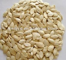 Shine skin pumpkin seeds11mm 11cm