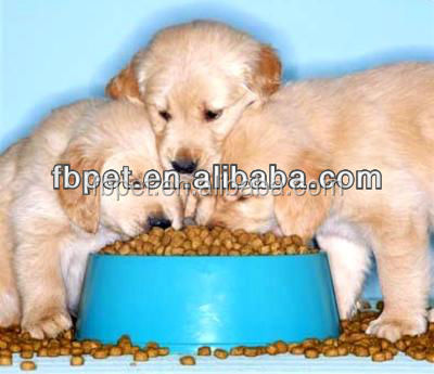 gourmet pet food for adult dogs and puppies
