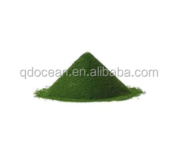 Top quality Nannochloropsis power with reasonable price and fast delivery on hot selling !!