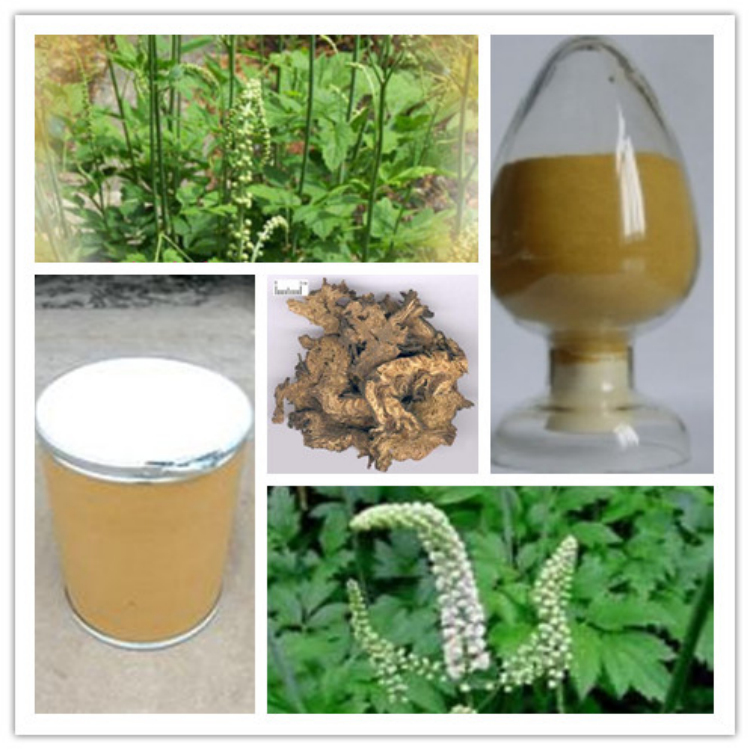 Triterpenoid Saponins,high quality in bulk stock,GMP manufacture,welcome inquiry