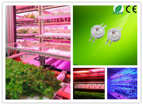 CE Approved Bridgelux Chips 3w LED RGB RGBW Full Spectrum Plant Grow Light (2).jpg