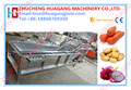 Automatic vegetable and fruit cleaning machine for sale