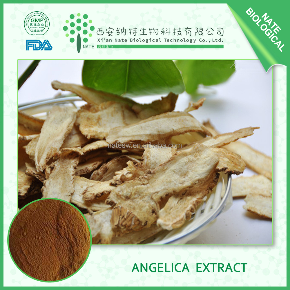 100% natural Angelica Root Extract and Angelica Root Extract powder 10:1 Ligustilide