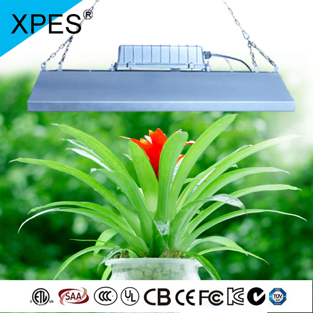 Xpes 2016 Plant Grow Light Indoor Used Grow Lights Sale