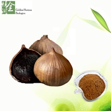 GMP Manufacturer Supply 100% Natural Black Garlic Extract
