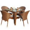 Plastic Rattan Weaved Garden Dinner Set