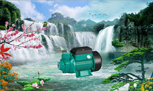 100% copper wire brass impeller 0.37kw/0.5HP Qb60 Qb70 Qb80 high efficient household electric pumps Water Garden Irrigation Pump