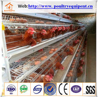 chicken poultry farm cage design for sale