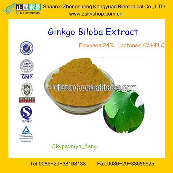 Top Quality Ginkgo Biloba Extract Flavones 24% Lactones 6% from GMP Factory