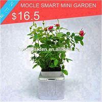 flower vases for home & garden