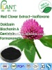 Red clover powder extract
