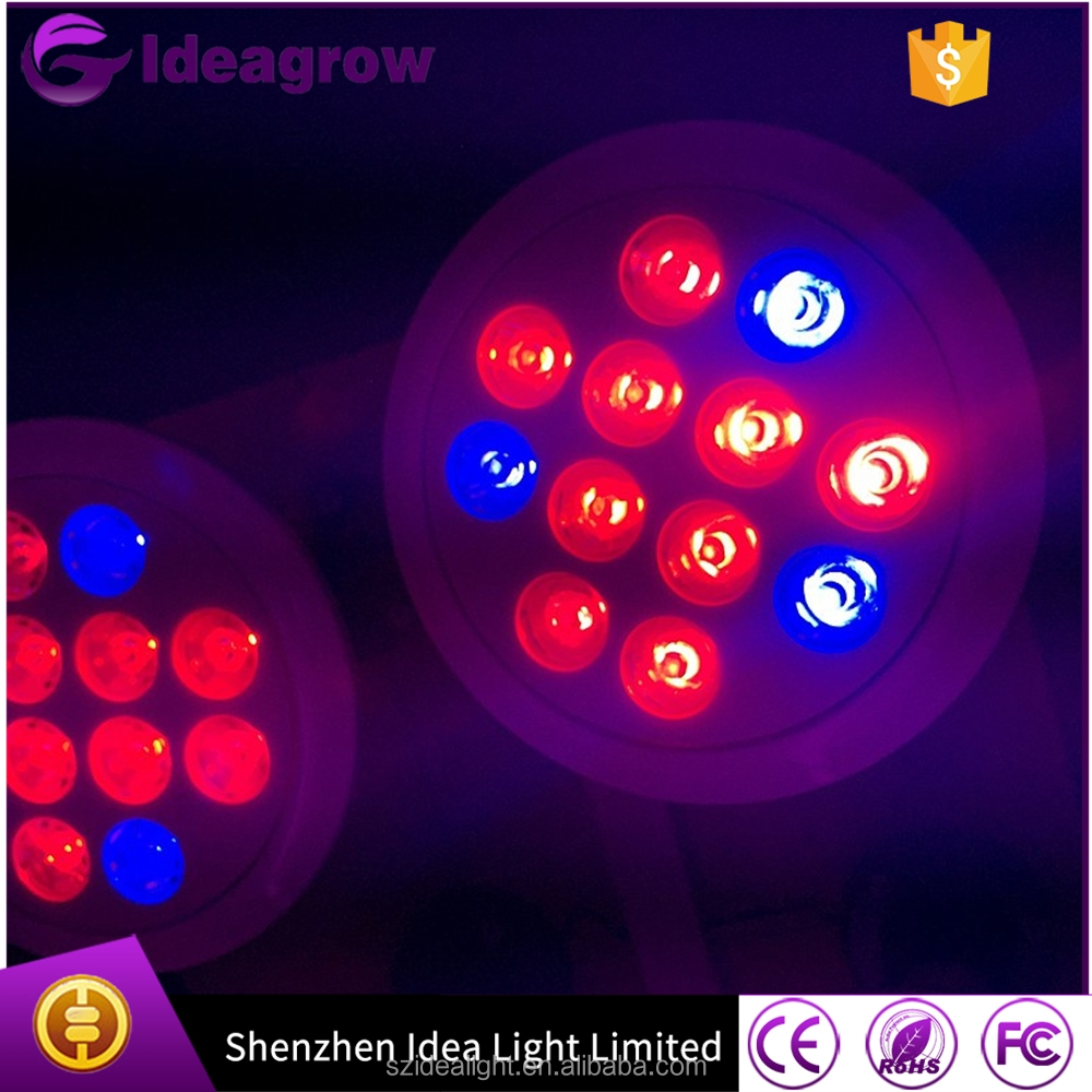 Highest Efficient Hydroponic LED Grow Light bulb Plant Grow Lights E27 Growing Lamp For Garden Greenhouse in 12w green led light