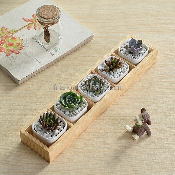 Indoor decor small white ceramic rectangular plant pots