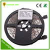 Outdoor LED Flexible Strip Light for Building Decoration 12v battery powered rgb led strip light